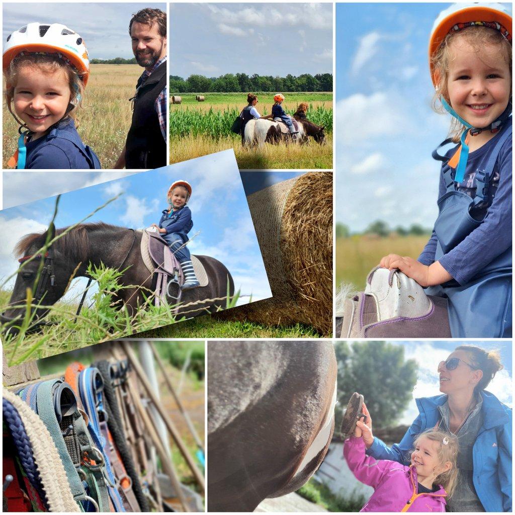 Füttern, Striegeln, Reiten. Das Leben war heute ziemlich Ponyhof. Sonniger Geschenkausritt in die Mark Brandenburg.