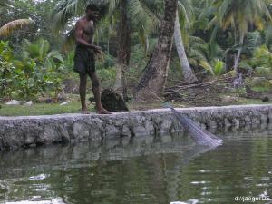 Backwaters: Fishermens Friend und sein Abendbro