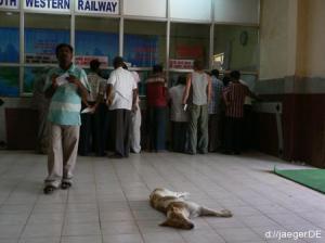 ich beim Ticketkauf mit Laengen: der Hund ist uebrigens nicht tot, nur sehr muede