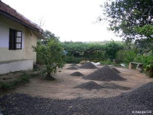 Basislager: trocknender Kaffee im Garten