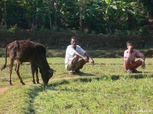 tuechtige Inder (Agraroekonomen)