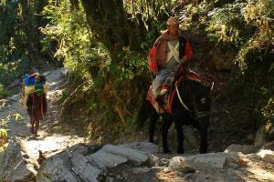 Sherpas - Die wahren Könige im Himalaya
