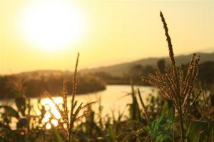 Abends, am River Kok