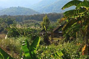 Hill-Tribe Village - ziemlich versteckt